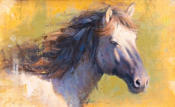 Study in Equine
